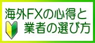 海外FX初心者