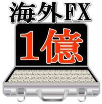 海外FX1億