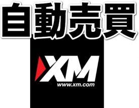 XM自動売買